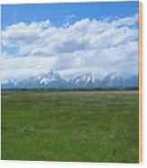Grand Tetons Meadow Wood Print