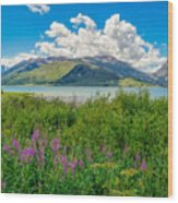Grand Tetons Wildflowers Wood Print