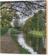 Grand Western Canal At Crown Hill Wood Print