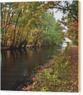 Grand Western Canal At Westcott Wood Print