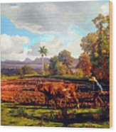 Grandfather Farm Wood Print