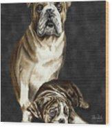 Grandson Of Sampson 2 Wood Print