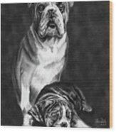 Grandson Of Sampson Wood Print