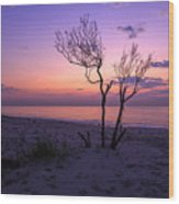 Grandview Beach Sunrise Wood Print