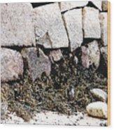 Granite And Seaweed Wood Print