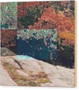 Granite Outcrop And Fall Leaves Aep2 Wood Print