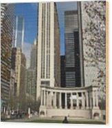 Grant Park Chicago Wood Print