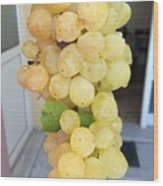 Grape From Chios Mountains In Greece Wood Print