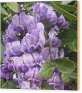 Grape Nectar Wood Print