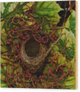Grape Nest Wood Print