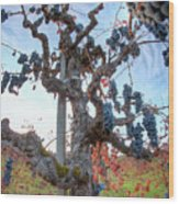 Grapes Aloft Wood Print