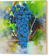 Grapes Of The Vine Wood Print