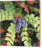 Grapes With Leaves - Too Wood Print