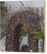 Grapevine Covered Stone Garden Door Wood Print