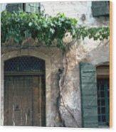 Grapevine Wood Print