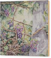 Grapevine Laurel Lakevineyard Wood Print