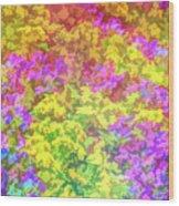 Graphic Rainbow Colorful Garden Wood Print