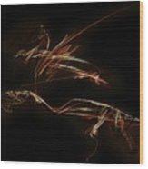 Graphics 1616 Wood Print