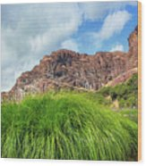 Grass Along John Day River In Central Oregon Wood Print