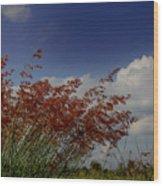Grass And Sky Wood Print