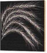 Grass Curve Coppertone Wood Print