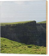 Grass Fields Surrounding The Cliff's Of Moher Wood Print