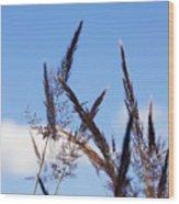 Grass Florets Wood Print
