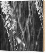 Grass Flowers Wood Print