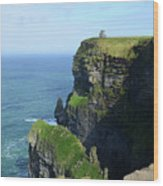 Grass Growing Along The Cliff's Of Moher In Ireland Wood Print