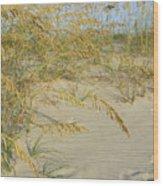 Grass On The Beach Sand Wood Print