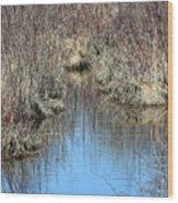 Grass Reflections Wood Print