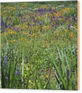 Grass Screen Wood Print
