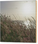 Grass Wave Wood Print