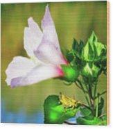Grasshopper And Flower Wood Print