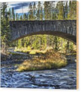 Grasshopper Creek Wood Print