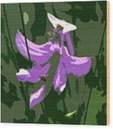 Grasspink Wood Print