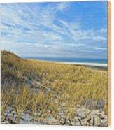 Grassy Dunes Wood Print