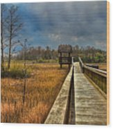Grassy Glades Wood Print by Debra and Dave Vanderlaan