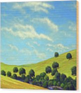 Grassy Hills At Meadow Creek Wood Print
