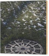 Grassy Manhole Wood Print