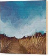 Grassy Path Wood Print