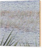 Grassy Waters Wood Print