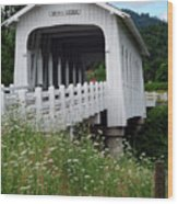 Grave Creek Bridge Wood Print