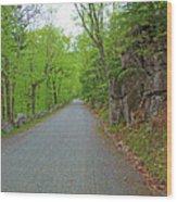 Gravel Paths Wood Print