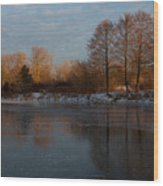Gray And Amber - An Early Winter Morning On The Lake Shore Wood Print