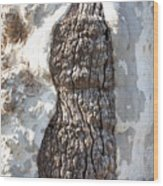 Gray Bark Abstract Wood Print