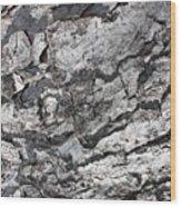 Gray Bark Wood Print