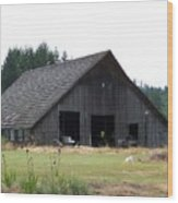 Gray Barn     Washington State Wood Print