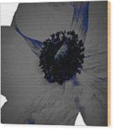 Gray Blue Poppy Wood Print