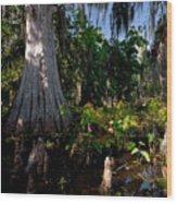 Gray Cypress Wood Print